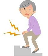 グルコサミン 膝痛に効く